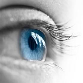 Calo della vista